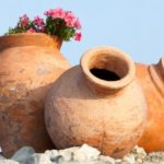 Three amphora clay pots with flowers growing inside.
