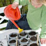 Planting Seeds Object Lesson (1 Corinthians 3-5-8)